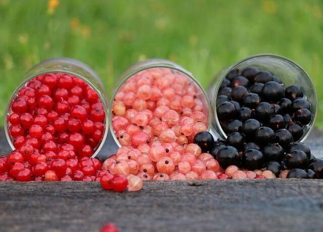 3つの果実
